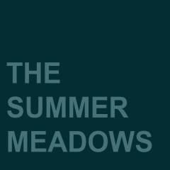 The Summer Meadows