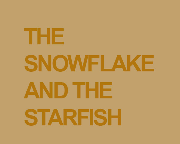 The Snowflake and the Starfish